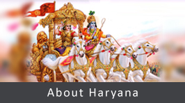 About Haryana