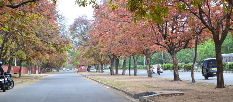 Climate of Chandigarh